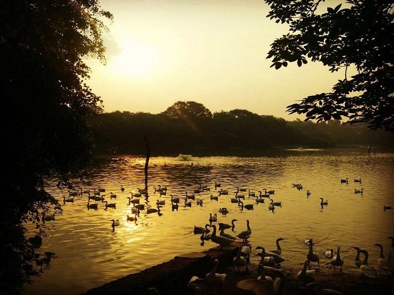 hauz khas village best photoshoot locations in Delhi NCR Lush lodhi garden